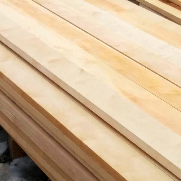 Birch Betula wood