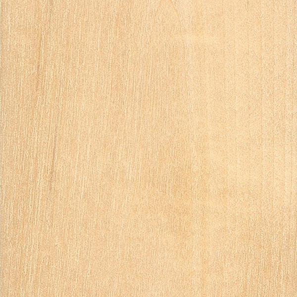 Patterns of birch betula wood